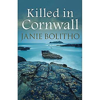 Tué en Cornouailles (la série Rose Trevelyan)