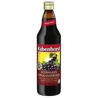 Rabenhorst Eco Juice of Blackcurrant in Red Grape 750 ml (Dieet , Drankjes)