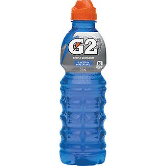 Gatorade G2 Pomegranite Blueberry-( 591 Ml X 12 Bottles )