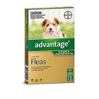 Etu vihreä 6 pakata pienet koirat 0-4 kg