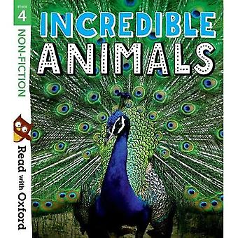 Read with Oxford: Stage 4:� Non-fiction: Incredible Animals