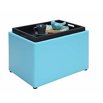 Designs4Comfort Accent Storage Ottoman - R8-159