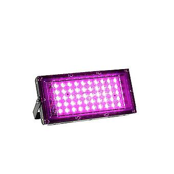 LED Grow Light 50W 100W LED Valonheitin Täyden spektrin lamppu Hydroponic (UK Plug)