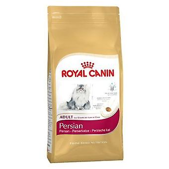 Royal Canin chat nourriture persan 30 sec mélanger 10 kg