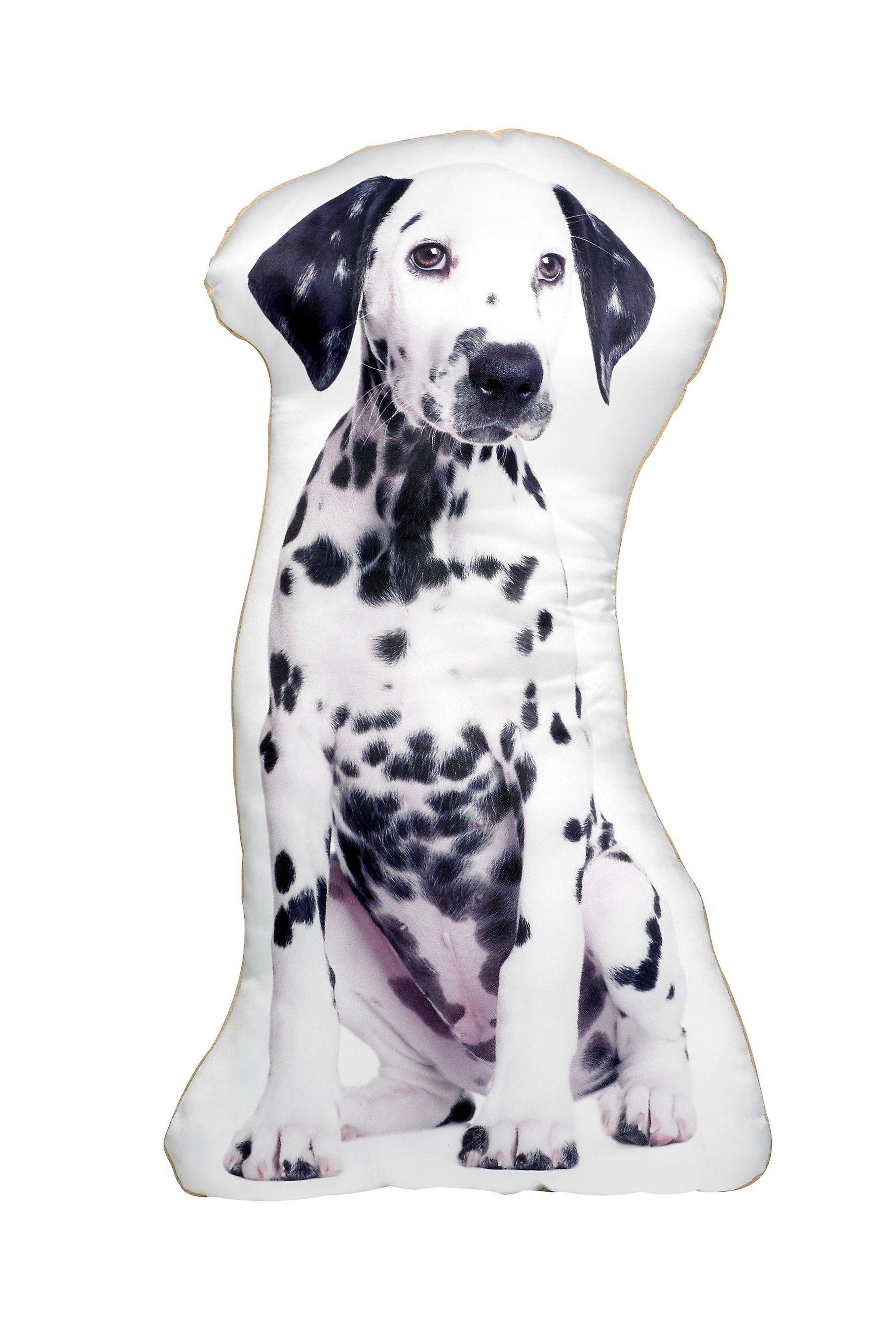 Adorable dalmatian shaped cushion