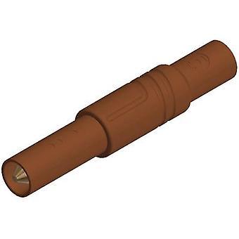 SKS Hirschmann LAS S G suora terä turvallisuutta kytke pistoke, suoraan sokan halkaisija: 4 mm ruskea 1 PCs()