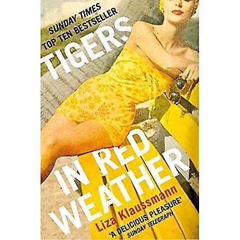 Tiger in roten Wetter