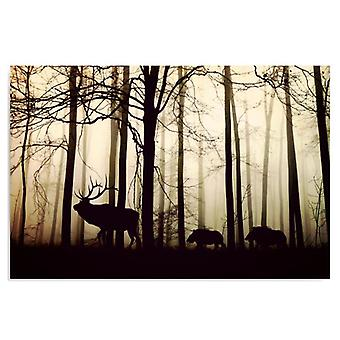 Canvas, Immagine su tela, Animali nella foresta