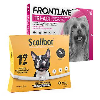 Frontline Tri Act Toy Breed + Scalibor
