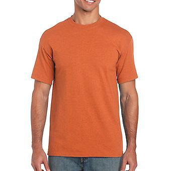 Gildan G5000 schlichte schwere Baumwolle T Shirt in Antik Orange