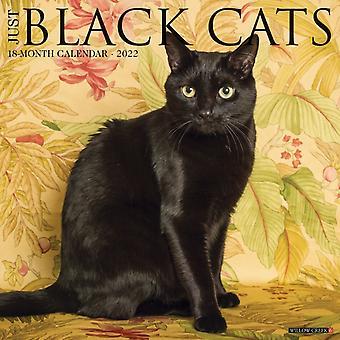 Just Black Cats 2022 Wall Calendar by Willow Creek Press