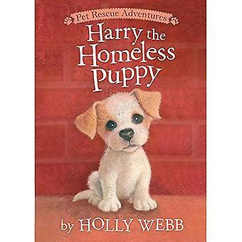 Harry le chiot sans abri (aventures de sauvetage pour animaux de compagnie)