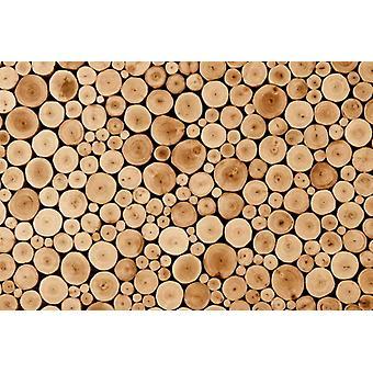 Wallpaper Mural Round Teak Wood