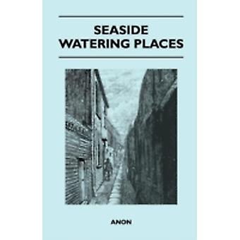 Seaside Watering Places A Description Of Holiday Resorts On The Coasts Of England And Wales The Channel Islands And The Isle Of Man Including The Gayest And The Quietest Places by Anon