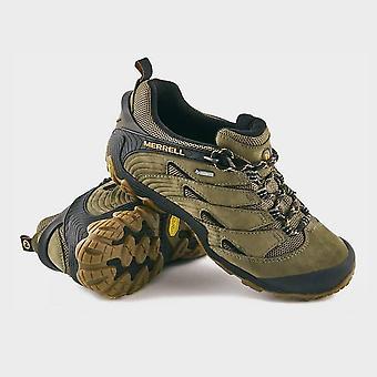 Merrell Men's Chameleon 7 GTX® Shoes Olive
