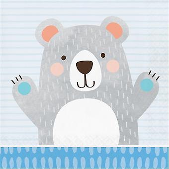 Birthday Teddy Bear Paper Party Napkins 2 ply x 16