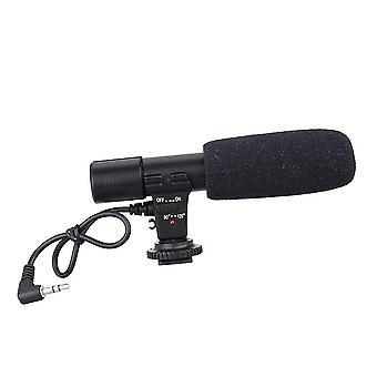 Stereokamera Aufnahmemikrofon