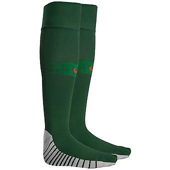 2018-2019 Portugalsko Nike domovské ponožky (zelený)