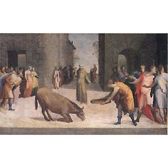 St. Antonius und das Wunder der Mule, Domenico Beccafumi