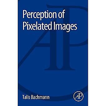 Wahrnehmung von verpixelten Bildern
