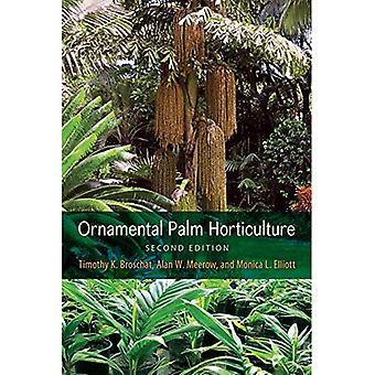 Prydnads Palm trädgårdsodling