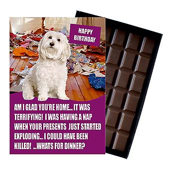 Bichon Frise Funny Birthday Gifts For Dog Lover Boxed Chocolate Greeting Card Present