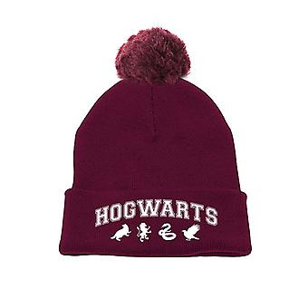 Harry Potter-Hogwarts Beanie