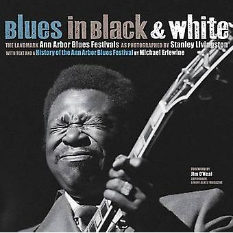 Blues in Black and White por Michael Erlewine