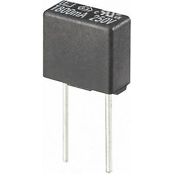 ESKA 883024 Pico sulake säteittäinen Lyijy pitkänomainen 5 A 250 V aika viive-T-1 kpl (s)