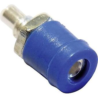 Schnepp BU 2400 Mini jack socket Socket, vertical vertical Pin diameter: 2 mm Yellow 1 pc(s)