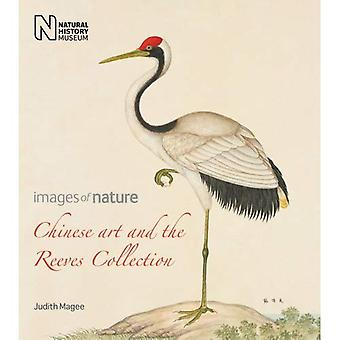Chinese Art and the Reeves Collection: Images of Nature