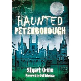 Assombrado de Peterborough (assombrado (história imprensa))