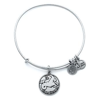 Alex and Ani Capricorn Silver Bangle A13EB01CARS