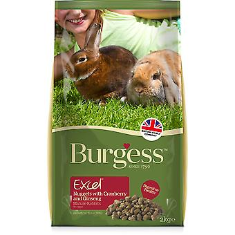 Excel Rabbit 5+ Mature avec canneberge & Ginseng - 2kg