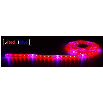 Dc 12v は、温室効果のための光、フルスペクトラムストリップフィトランプを成長させる,