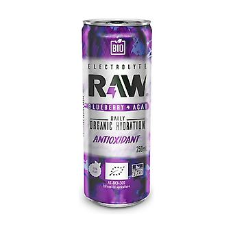 Sooda ilman kaasua Raaka SuperJuoma Antioksidantti mustikat ja Açai Bio 250 ml