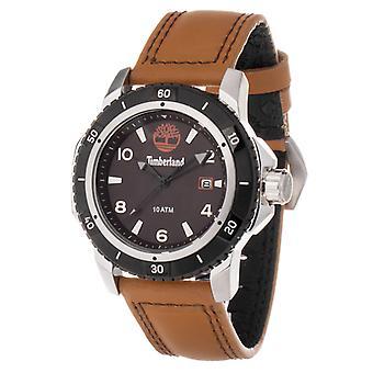 Men's Watch Timberland TBL13327JS-13GNM