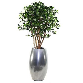 Artificial Oriental Olive deluxe 120cm