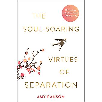 The SoulSoaring Virtues of Separation 111 Learnings to Heal Your Heart and Help You Fly