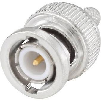 Rosenberger 51S107-106N5 BNC connector Plug, straight 50 Ω 1 pc(s)