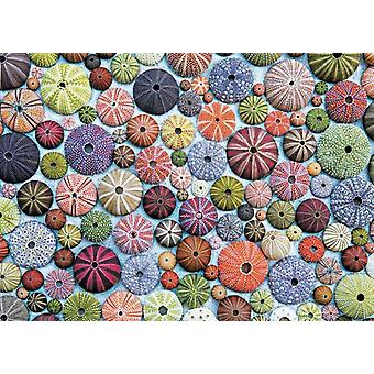 Piatnik Sea Urchins Jigsaw Puzzle (1000 Pieces)