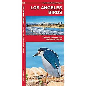 Pocket Naturalist: Los Angeles Birds