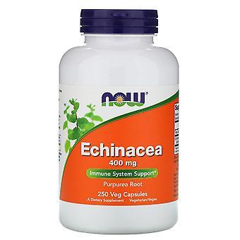 Nu voedingsmiddelen, Echinacea, 400 mg, 250 vegetarisch capsules