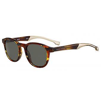 نظارات شمسية للرجال 1052/SEX4/QT الرجال البني / الأخضر