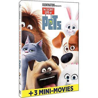 Secret Life of Pets [DVD] USA import