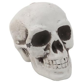 Plastic Mini Human Skull Decor Prop, Skeleton Head, Halloween Coffee Bars