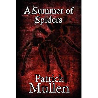 A Summer of Spiders