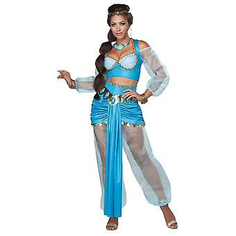 Arabian Princess Adult Costume