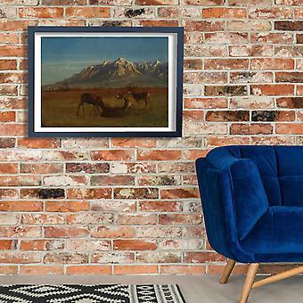 Albert Bierstadt - Deer in Mountain Home Poster Print Giclee