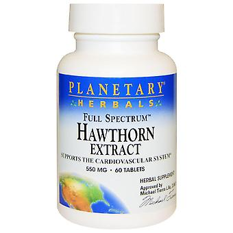 Planetary Herbals, Full Spectrum, Hawthorn Extract, 550 mg, 60 Tablets